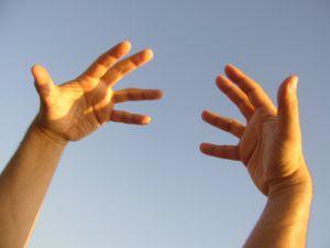 las-manos-esqueleto-humano-anatomia-huesos-del-cuerpo-humano