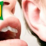 El uso de la lengua es siempre húmedo