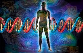 Frecuencia vibracional: frases célebres y fragmentos literarios